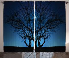 Ay Işığı ve Yıldızlar Fon Perde Ağaç Siyah