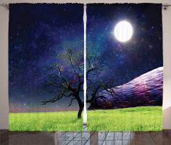 Ay Işığı ve Ağaç Fon Perde Ay Işığı Kozmos Evren Mor