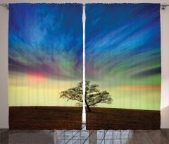 Yalnız Ağaç Fon Perde Sürreal Gökyüzü