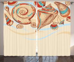 Deniz Kabuğu Fon Perde Pastel Renkler Eskiz