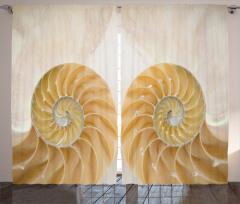 Şık Deniz Kabuğu Fon Perde Trend Krem Rengi