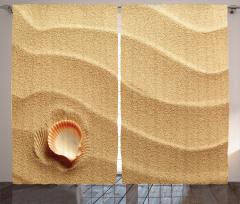 Kumsaldaki Deniz Kabuğu Fon Perde Yaz Sahil