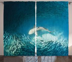 Balık Temalı Fon Perde Turkuaz Deniz Köpek Balığı