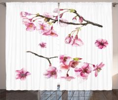 Mor Ağaç Çiçekleri Fon Perde Beyaz Fonlu