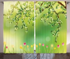 Laleler ve Ağaçlar Fon Perde Renkli Laleler Ağaç Doğa Bahar