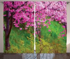Baharda Japon Çiçekleri Fon Perde Bahar Bahçesi