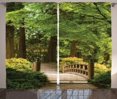 Doğada Yolculuk Fon Perde Ağaçlar Huzur