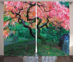 Kızıl Yapraklı Ağaç Desenli Fon Perde Pembe Yapraklar Yeşillik