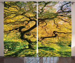Akçaağaç Desenli Fon Perde Bahar Yeşil Doğa Sarı
