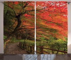 Doğada Yürüyüş Temalı Fon Perde Bahar Yaprakları