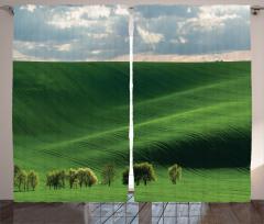 Uçsuz Bucaksız Çayır Fon Perde Yeşil Doğa Ağaçlar