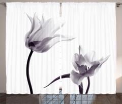 Lale Desenli Fon Perde Baharın Habercisi Çiçekler
