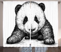 Bebek Panda Fon Perde Siyah Beyaz Sanat