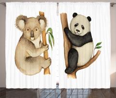 Sevimli Koala ve Panda Fon Perde Sevimli Koala ve Panda