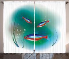 Süslü Balık Desenli Fon Perde Rengarenk Sualtı