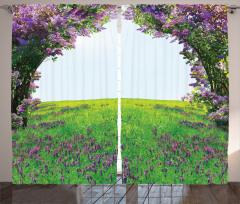 Menekşe Bahçesi Manzaralı Fon Perde Mor Yeşil