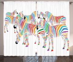 Sevimli Zebra Fon Perde Rengarenk Sevimli Zebra