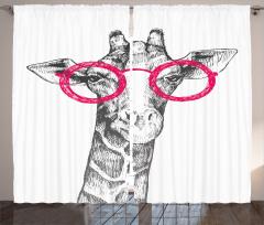 Pembe Gözlüklü Zürafa Fon Perde Pembe Gözlüklü Zürafa