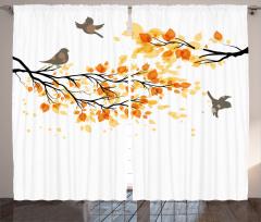 Daldaki Kuşlar Fon Perde Dallarda Kuşlar Beyaz
