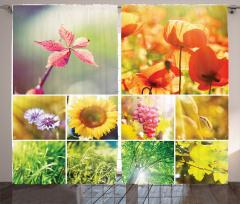 Çiçekler ve Ağaçlar Fon Perde Çiçekler Ağaçlar Yeşil