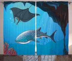 Yüzen Köpek Balığı Fon Perde Köpek Balığı Mavi