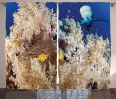 Su Altındaki Balıklar Fon Perde Balıklar Mavi