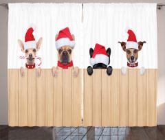 Yeni Yıl Köpekleri Fon Perde Bej Beyaz Şık