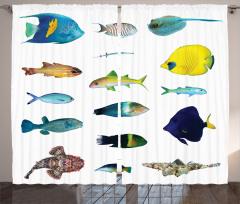 Rengarenk Balık Desenli Fon Perde Şık Sarı Beyaz