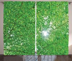 Yeşil Ağaç ve Güneş Fon Perde Şık Dekoratif