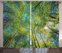 Orman ve Gökyüzü Temalı Fon Perde Yeşil ve Sarı