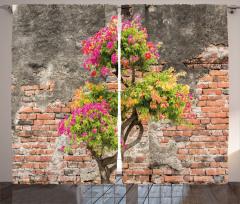 Tuğla Duvar ve Ağaç Fon Perde Pembe Çiçek