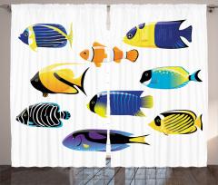 Şık Balık Desenli Fon Perde Deniz Beyaz