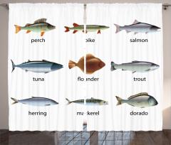 Balık Türleri Desenli Fon Perde Deniz Beyaz