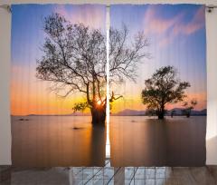 Ağaç ve Gökyüzü Temalı Fon Perde Ağaçlar