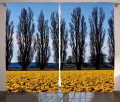 Ağaç ve Çiçek Temalı Fon Perde Sarı Mavi Gökyüzü