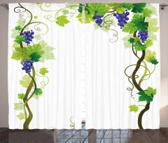 Üzüm Desenli Fon Perde Yeşil Mavi Beyaz Yaprak Şık
