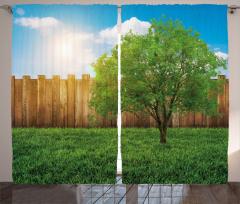 Ağaç ve Gökyüzü Temalı Fon Perde Yeşil Mavi Çimen