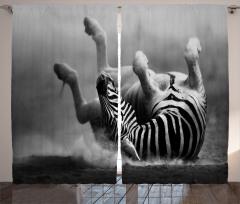 Zebra Desenli Fon Perde Siyah Beyaz Şık Tasarım