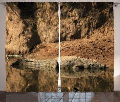 Timsah Temalı Fon Perde Kahverengi Afrika Hayvan