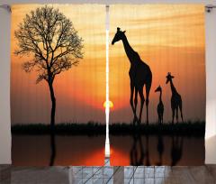 Zürafa Temalı Fon Perde Turuncu Güneş Afrika Doğa