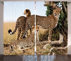Çita Temalı Fon Perde Kahverengi Vahşi Yaşam Şık