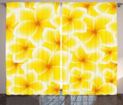 Sarı Beyaz Çiçek Fon Perde Şık Çeyizlik