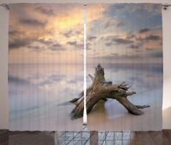 Denizdeki Dal Parçası Fon Perde Bulutlu Gökyüzü