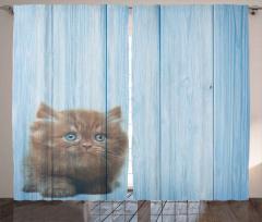 Sevimli Minik Kedi Desenli Fon Perde Mavi Ahşap