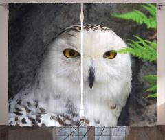 Kuş Portreli Fon Perde Beyaz Şık Tasarım Doğa