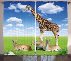 Zürafa ve Antilop Fon Perde Mavi Yeşil