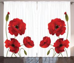 Kırmızı Çiçek Desenli Fon Perde Çeyizlik Trend Şık