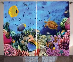 Su Altı Temalı Fon Perde Mavi Balık Şık Tasarım