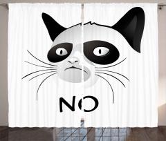 Siyam Kedisi Portresi Fon Perde Hayır