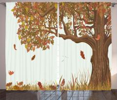 Yaprakları Dökülen Ağaç Fon Perde Kahverengi Şık